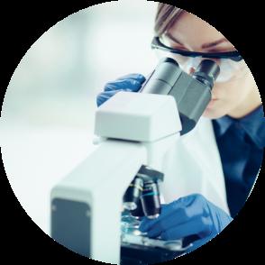 Chercheur laboratoire phytogenese